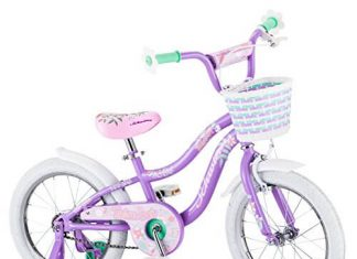 Schwinn Jasmine Kids Bicycle 16 wheel size, age 4 to 7 with training wheels, girl's purple