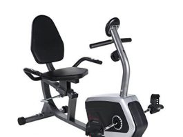Sunny Health & Fitness Magnetic Recumbent Bike Exercise Bike, 300lb Capacity- SF-RB4616