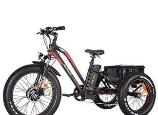 Addmotor Motan Electric Tricycle 24 Inch Fat Tire Electric Trike 3 Wheel Ebikes 750W Electric Bike