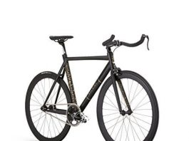 Raleigh Bikes Teaba Fixed GearSingle Speed City Bike
