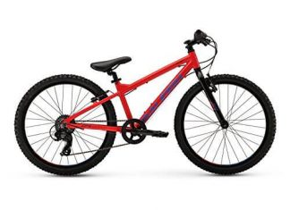 New 2017 Raleigh Rowdy 24 Complete Mountain Bike